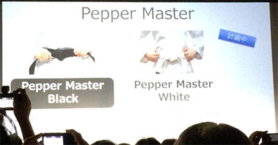 Pepper 認定資格種類