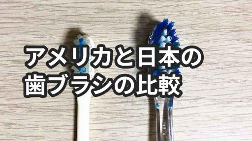 奇跡の歯ブラシとアメリカの歯ブラシの比較