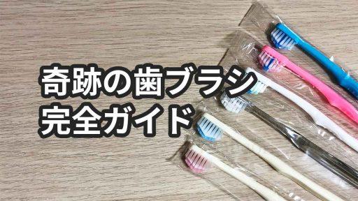 奇跡の歯ブラシの総まとめ【ヘビーユーザーが口コミから種類まで解説】