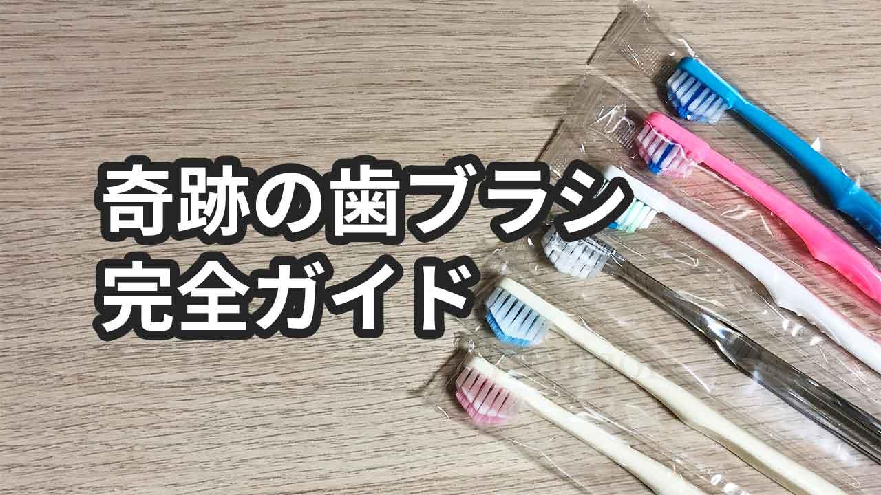 奇跡の歯ブラシの総まとめ